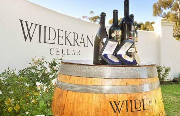 Endless Vineyards is far more than just another wine farm