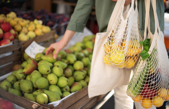 Nine savvy sustainability tips for World Consumer Rights Day