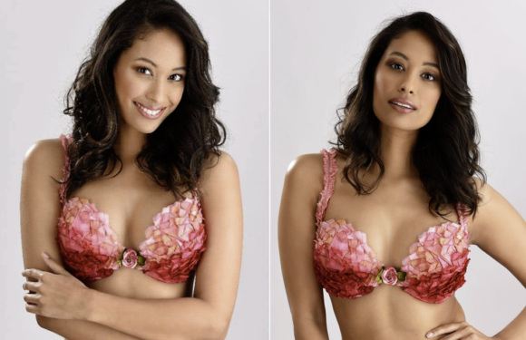 """Stunning """"Rooibos Bra"""" in aid of breast cancer awareness revealed"""