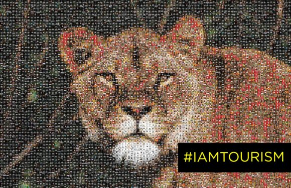 Women in tourism stand behind #IAmTourism campaign to reopen the industry
